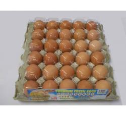 Lew Brothers Egg - Fresh Eggs
